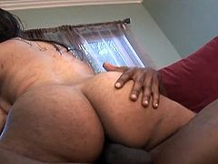 This nasty ebony bitch has one hot badonkadonk and this gangsta is ready to get some big black cock action going on in this free tube video.