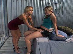 A couple of slutty bitches suckin' on each other's cunts and fuckin' being lesbians and shit, at least for the camera, check it out!