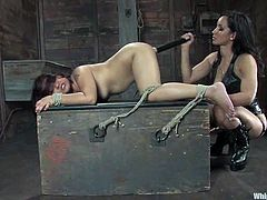 Naughty babe gets tied up and then toyed with a dildo and the vibrator at the same time. Then she licks her mistress' pussy.