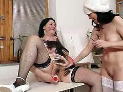 Madam brunettes pounde their bearded clam plus hump playthings