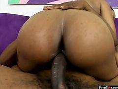 What a fat Janae has! Damn, that big juicy ass of hers drives me insane. She rides her lover's dick passionately making her fine ass shake like jello.