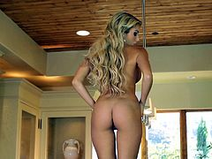 A tight blonde fuckin' bitch gets naked for the camera and fuckin' performs a solo scene on the kitchen counter. Check it out!
