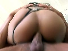 Sweet brunette girl in fishnets lies on a billiard table getting her vagina licked. Then this hottie gets fucked in pussy and ass in a bedroom.