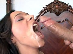 Feeling this tasty dick sliding her throat, turns Arielle Alexis into a wild slut
