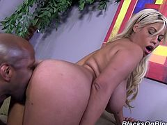 Bridgette B is a sexy blonde with massive round tits taking a pounding from a big black cock in this hardcore interracial scene.