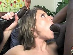 Blacks On Cougars brings you a hell of an interracial free porn video where you can see how the naughty brunette milf Velicity Von gets assfucked by two blacks studs.