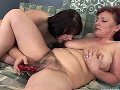 These BBWs have a party. They eat a cake and then have lesbian sex. Three mature women take their clothes off and start to toy pussies with different sex toys.