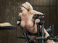 Sexy bosomy blonde Madison Scott gets chained in a basement. Then some guy attaches weights to Madison's tits and drills her cunt with a toy.