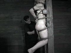 Penny Barber has a front row seat to the complete devastation of Darling's body. The whip leaves its mark first, but it is the 10 inch cock crammed into her pussy that makes Darling start to scream. Penny is showered in squirt in a matter of minutes.The way Darling is tied to this post you will have to see it to believe. It is nothing short of spectacular. She is lashed to it, several feet off of the ground, while her tits are tied off and her ass caned. It is the amazing, back-breaking bridge that she is tied into that really takes the cake.
