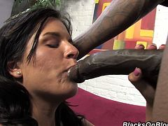 Cute Brunette Missy Maze Fucking With Black Dude And Gets Creampie