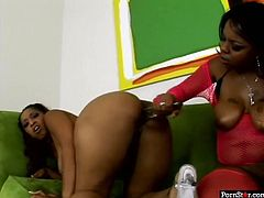 Two full figured ebony tramps with king sized booties share double ended dildo. then one black babe backs up her massive butt in doggy pose letting her girlfriend fuck her wet cunt with dildo.