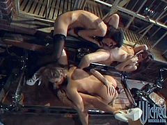 These hot cougars Ashley, Jenna, Rebecca and Serenity get down to business, licking fingering and fucking each other's holes! Those buzzing toys get all up inside and these girls scream!