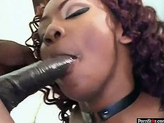 This chocolate temptress in sexy fishnet stockings is a real pro when it comes to art of pleasing men. She sucks her boyfriend's massive pecker with great enthusiasm. Then she wants him to return the favor and go down on her.