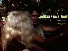 Funky stud drives car while horny blondie joyfully sucks his big dick