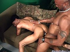 Skinny Latino poofter called Rico is having fun with two muscular black dudes indoors. He sucks their schlongs ardently and gets his butt banged doggy style.