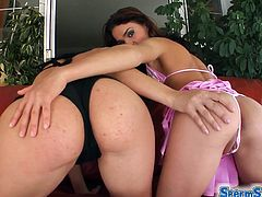 Have fun watching these brunette babes, with nice back doors wearing high heels, while they go really hardcore in a wild foursome.