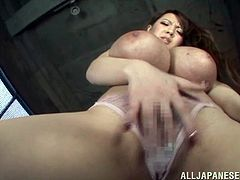 Her huge boobs are a delight but aren't you curious what she keeps between her curvy thighs? This Tokyo bitch is awesome and breasts deserve our complete attention. Look at her how she squeezes them on that glass, taunting us with them. Now she wants to go further so she rubs her pussy over her transparent panties
