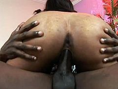 Long haired pretty looking ebony babe with magnificent body shapes posed doggy style in bed and got her tight vag properly massaged by big cock of that African dawg. Look at this whorish lassie in My XXX Pass sex video!
