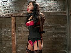 This sexy chick is tied up and has a ball gag in her mouth so her master can have his way with her. He inspects her to see how beautiful she is and he wants to see more so he pulls her panties up into her pussy. He takes out his trusty scissors and cuts off her bra.