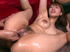 Watch steamy MMF threesome from Jav HD studios. Curvy Asian slut Tiara Ayase gets her naked body covered with oil. One guy finger fucks and licks her hairy pussy. Then Tiara gets on her knees and gives blowjob.