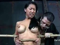 Tia ling tied up to wooden frames