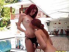These two sexy redheaded lesbo sluts really enjoy going for a swim and relaxing out on the deck. The only thing they enjoy more than that, is making out and fucking. One of the girls comes out of the swimming and begins the make out session, that leads to pussy licking.