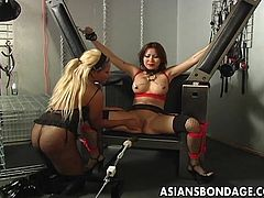 Siren Thorn is a sexy Asian beauty who gets tied up by her mistress. She has nipple clamps put on her and her arms and legs are spread wide. Then she gets a mechanical fuck machine thrusted into her cunt. She loves a good hard fucking.