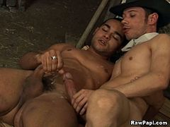 A White and a Black guys kiss in the stables. After that the Black dude gives a blowjob and gets butt fucked on the floor.