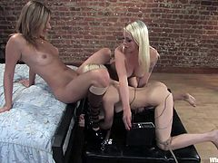Check out these three slim sluts. Both of them are young, sexy and blondes! Our girls love to play kinky and one of them has the role of a submissive wired sex slave. She stays with electrodes on her sexy ass while licking pussy and receiving shocks. What else will these cuties do for our and pleasure?