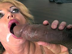 Charming Taylor Wayne shows her huge boobs and pussy to a Black guy right in the office. Then Taylor takes a huge black dick in her shaved pussy. She also gets her mouth filled with a big load of cum.