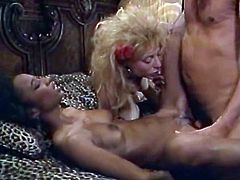 Kinky and filthy bitches, brunette gets drilled in mish pose and gets her tits licked by the blonde meanwhile slutty and filthy whore in the glasses and horny light haired slut suck the dick. Watch in The Classic Porn sex clip.