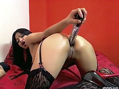 Kinky and slutty whore with nice body and awesome tits lays on the bed with opened holes and fucks herself with dildo. Have a look in steamy The Indian Porn sex clip.