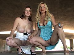 Danielle and her blonde GF are having fun outdoors. The chicks kiss and caress each other and then knead each other's natural boobs and flash their twats.