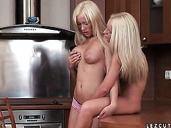 Blonde is in the mood for lesbian sex and spreads for Brittany Spring