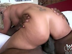 Hardcore interracial porn scene featuring bizarre porn slut with huge boobs. She deepthroats BBC before humping on top in cowgirl position.