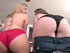 HDV Pass brings you a hell of a free porn video where you can see how the alluring milfs Sara Jay and Lisa Sparxxx share a hard rod of meat. The nasty blonde and the hot bbw brunette wanna misbehave.