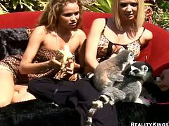 Amazing blonde Prinzzess and her pretty GF are getting naughty in the garden. The chicks kiss and caress each other and then lick each other's pussies and smash them with toys.