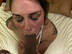 Sultry babe Scarlett Wild shows off how good she is in blowjob