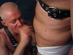 Two lewd poofters wearing briefs and leather straps are having fun in a basement. They favour each other with blowjobs and then fuck doggy style and moan with pleasure.