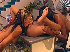Beautiful girls Lacey DuValle, Madison Love and Crystal Knight are having a good time together. The lesbians lick each other's cunts and then smash them with dildos.