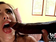 Stunning brunette MILF Casey Calvert never misses to fuck with huge black dongs. She got her pussy stretched, but wants to get her tight asshole ravished too.