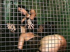 It's the rough pleasures that make them scream so loud during this awesome lesbian cage show