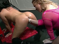It's quite impressive how babes can deal so much pain combined with pleasure during rough porn game