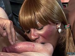 Horny black bitch gets her tits fucked hard and sucks the dick