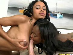 Luscious black girls have got beautiful bodies with mouth-watering tits. They give steamy double blowjob. Then one of the girl rides big dick in reverse cowgirl position.