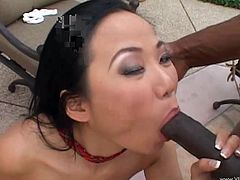 Make sure you have a look at this hardcore interracial scene where the sexy Asian babe Niya Yu plays with her wet pussy before sucking and fucking this guy's big black cock.