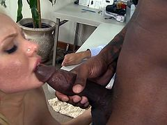 Knowing they are being ateched by horny hubbies, dirty wifes go nasty with really tasty black cocks