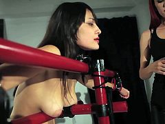 It's the first time lesbian hotties are playing like that in full of lust and passion femdom porn adventure