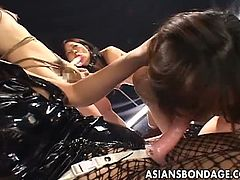 Asians Bondage brings you a hell of a free porn video where you can see how this wild Asian bdsm lesbian orgy gets out of control and these belles misbehave.