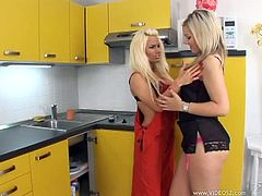 Press play on this hot lesbian scene where theses gorgeous blondes leaves you speechless as they please one another in the kitchen.